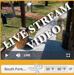South fork visitor live video