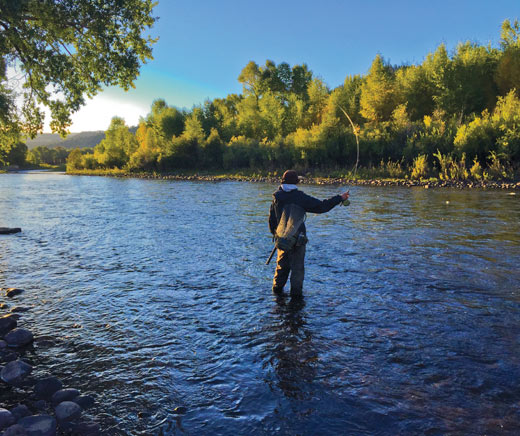 Fly Fishing on the Rio Grande Gold Medals Water