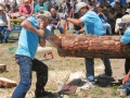 south fork logger days festival2
