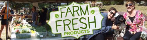 farmers-market-co